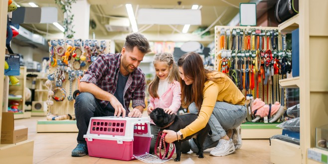 Pet-shop işletmecilerine sertifika fırsatı